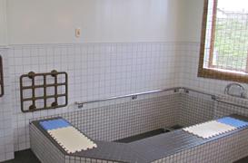 テスリ 手すり 手すり 手摺 浴室の手すり テスリックス
